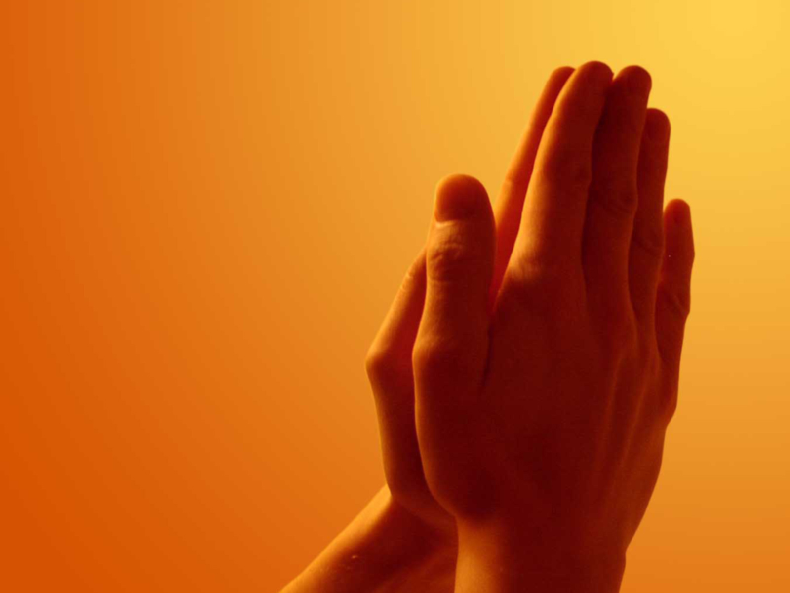 Praying_Hands_freecomputerdesktopwallpaper_1600